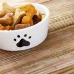 Выбор корма для щенка