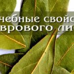 Лавровый лист: лечебные свойства
